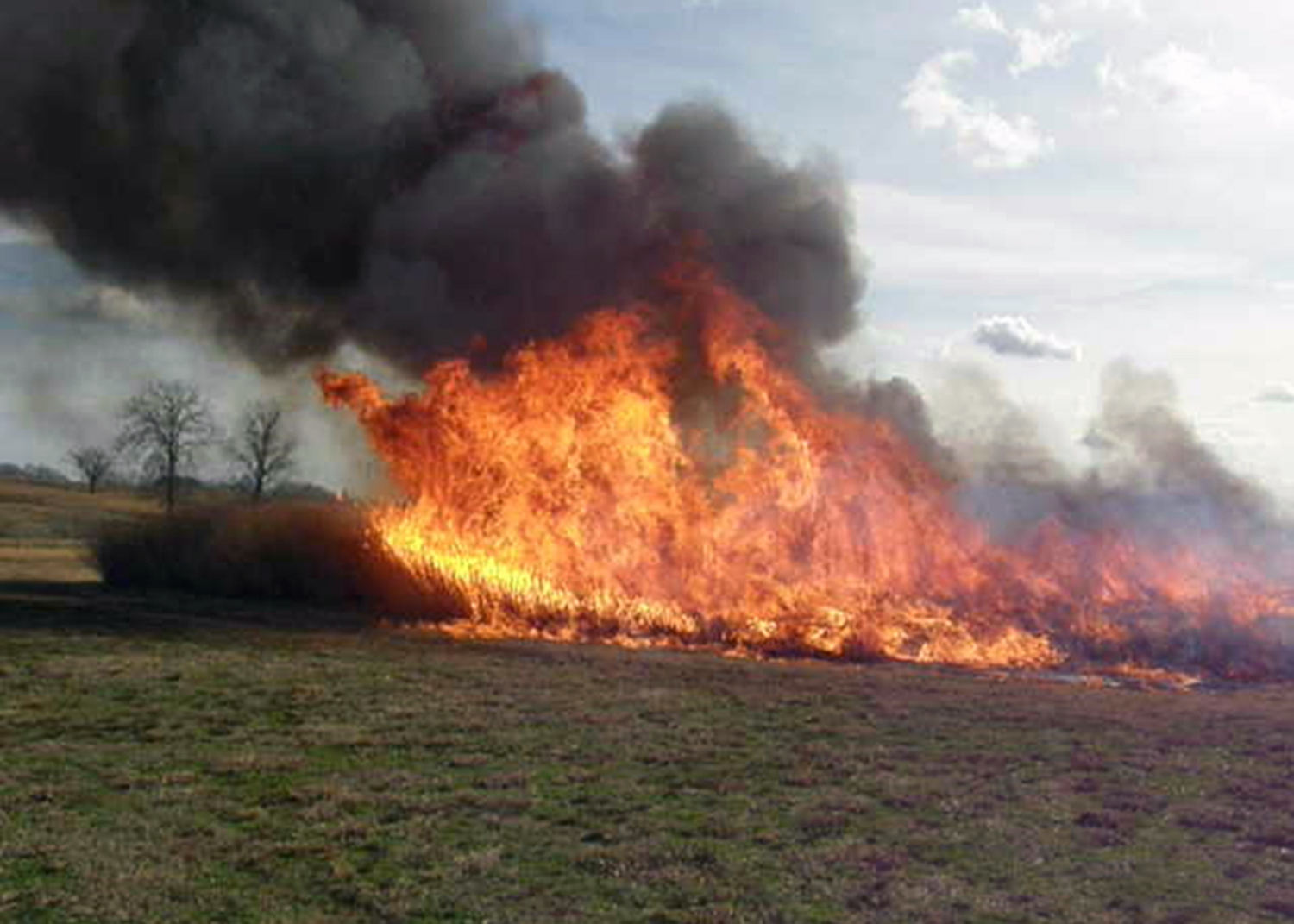 large flames and black smoke in a pasture that has been set on fire as a prescribed burn.