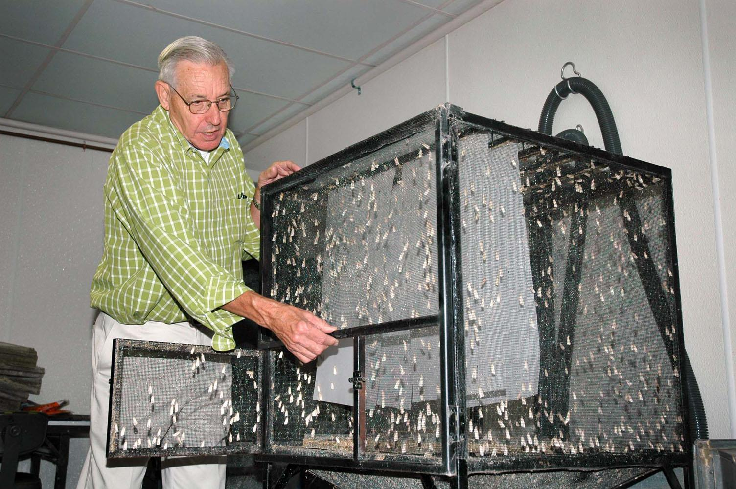 Frank Davis displays one of the large cages developed for holding adult southwestern corn borer moths at the U.S. Department of Agriculture's Agricultural Research Service facility in Starkville. (Photo by Linda Breazeale)