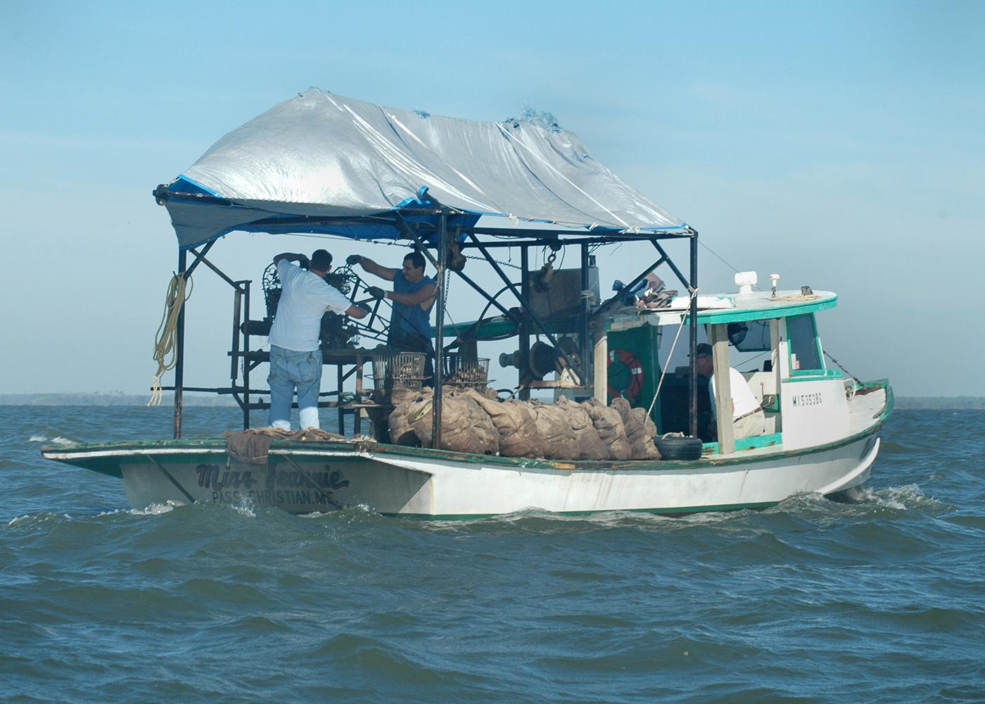 The Miss Jeannie out of Pass Christian was one of the boats harvesting oysters on the St. Joe Reef near Bayou Caddy in early October. (Photo by Bob Ratliff)