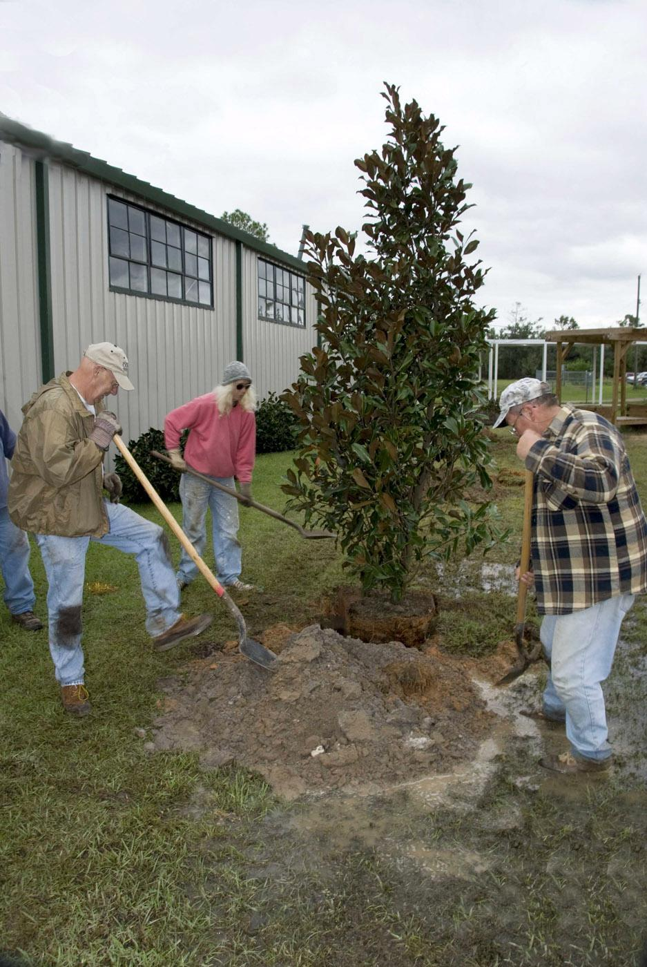 Lincoln County Master Gardener Homer Richardson, Karen Peresich and Steve Edge of Gautier plant trees at Pineville Elementary on Menge Road in Pass Christian as part of the Mississippi Master Gardeners Operation Rejuvenation on the Gulf Coast.  (Photo By Marco Nicovich)