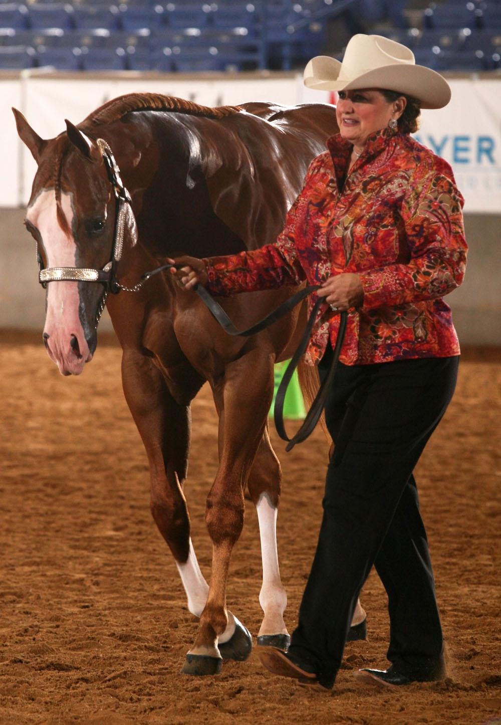 Photo courtesy of The American Quarter Horse Journal.