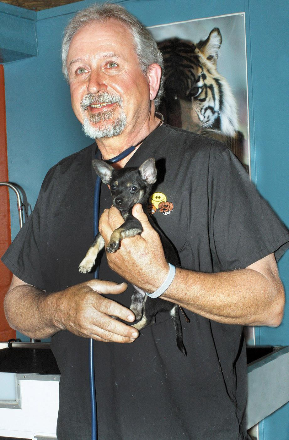 Perkins holds one of his small patients Wednesday at Iuka Animal Clinic, the practice he started after his 1971 graduation. (Photo by Steve Beavers, Daily Corinthian)
