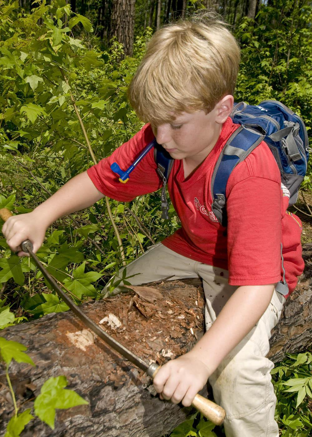 Peter Drackett, 11, of Long Beach scrapes the bark of a dead tree at the Noxubee Wildlife Refuge to find pine bark beetles. Drackett attended the Mississippi State University's annual Basic Insect and Plant Ecology in 2009. (Photo by Kat Lawrence)