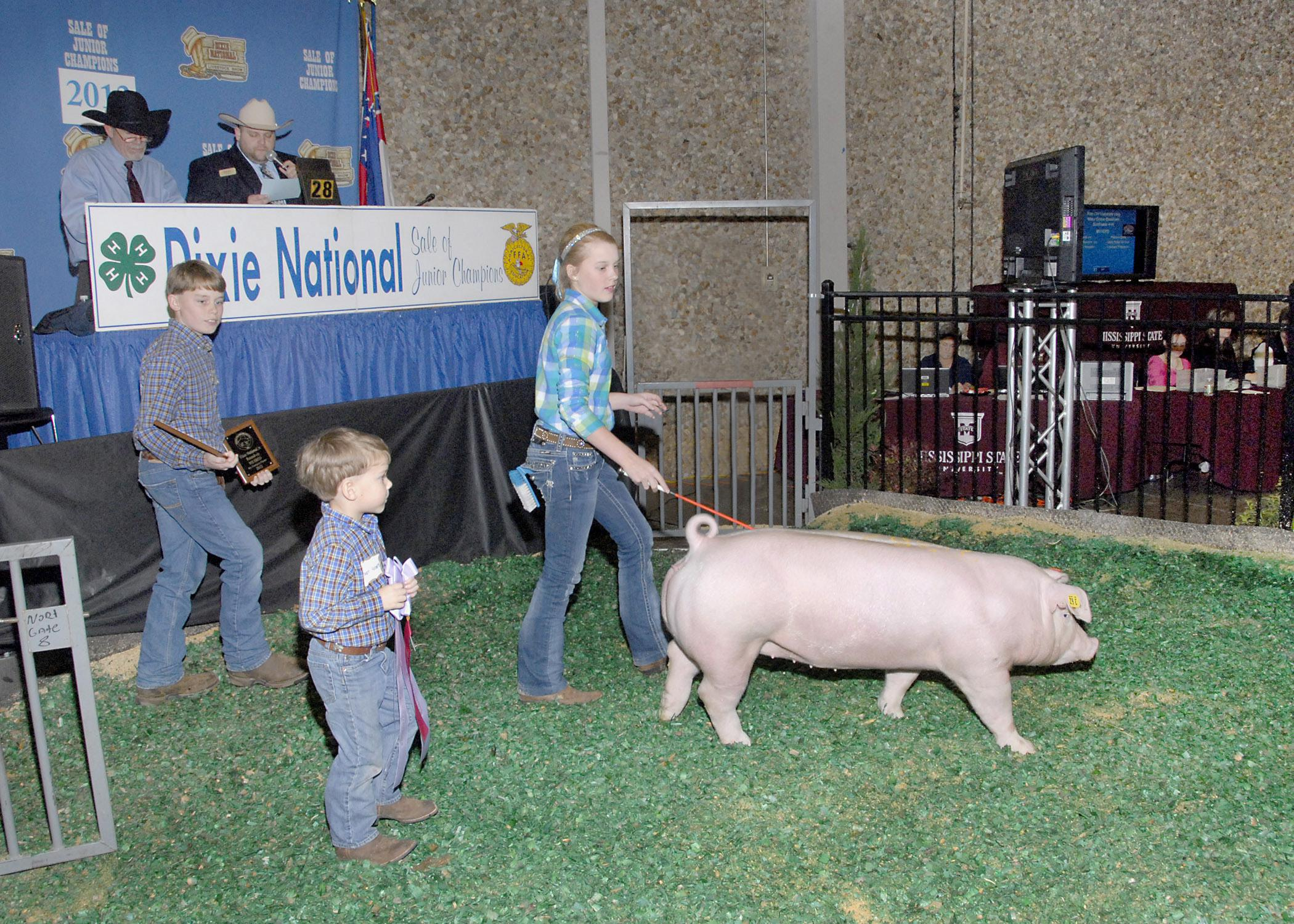 Twins James and Jillian Roberts of Belzoni are joined by their younger brother Joseph as they show their Reserve Champion Chester hog at the Dixie National Sale of Junior Champions in Jackson on Feb. 7, 2013. The twins participate in 4-H, the youth development program of the Mississippi State University Extension Service. (Photo by MSU Ag Communications/Tim McAlavy)
