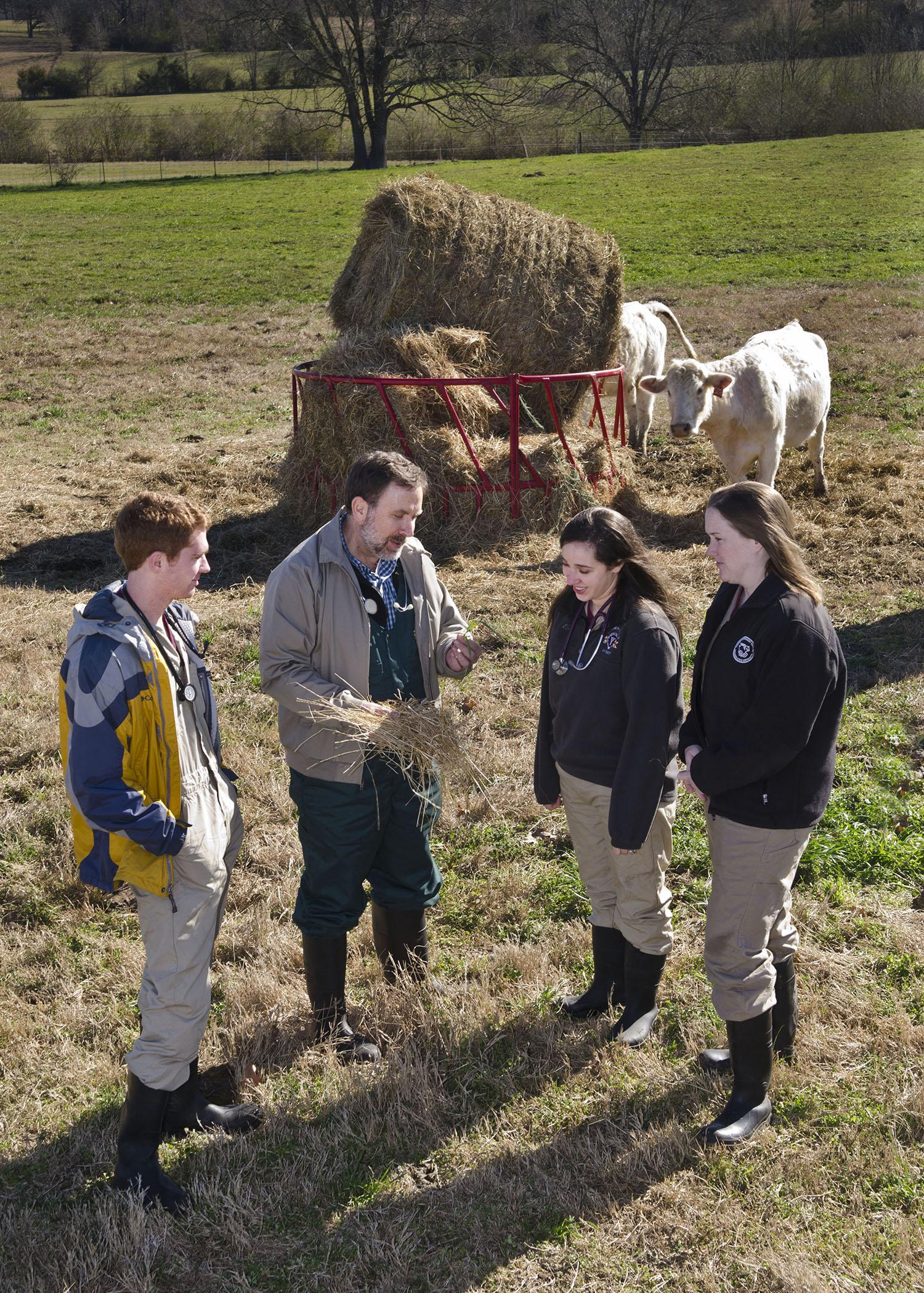 Dr. David Smith talks with Class of 2014 students, from left, Seth Jenkins, Lauren Comstock, and Lauren Bright. Smith says he believes his students learn to think on their feet while working with producers. (Photo by MSU College of Veterinary Medicine/Tom Thompson)