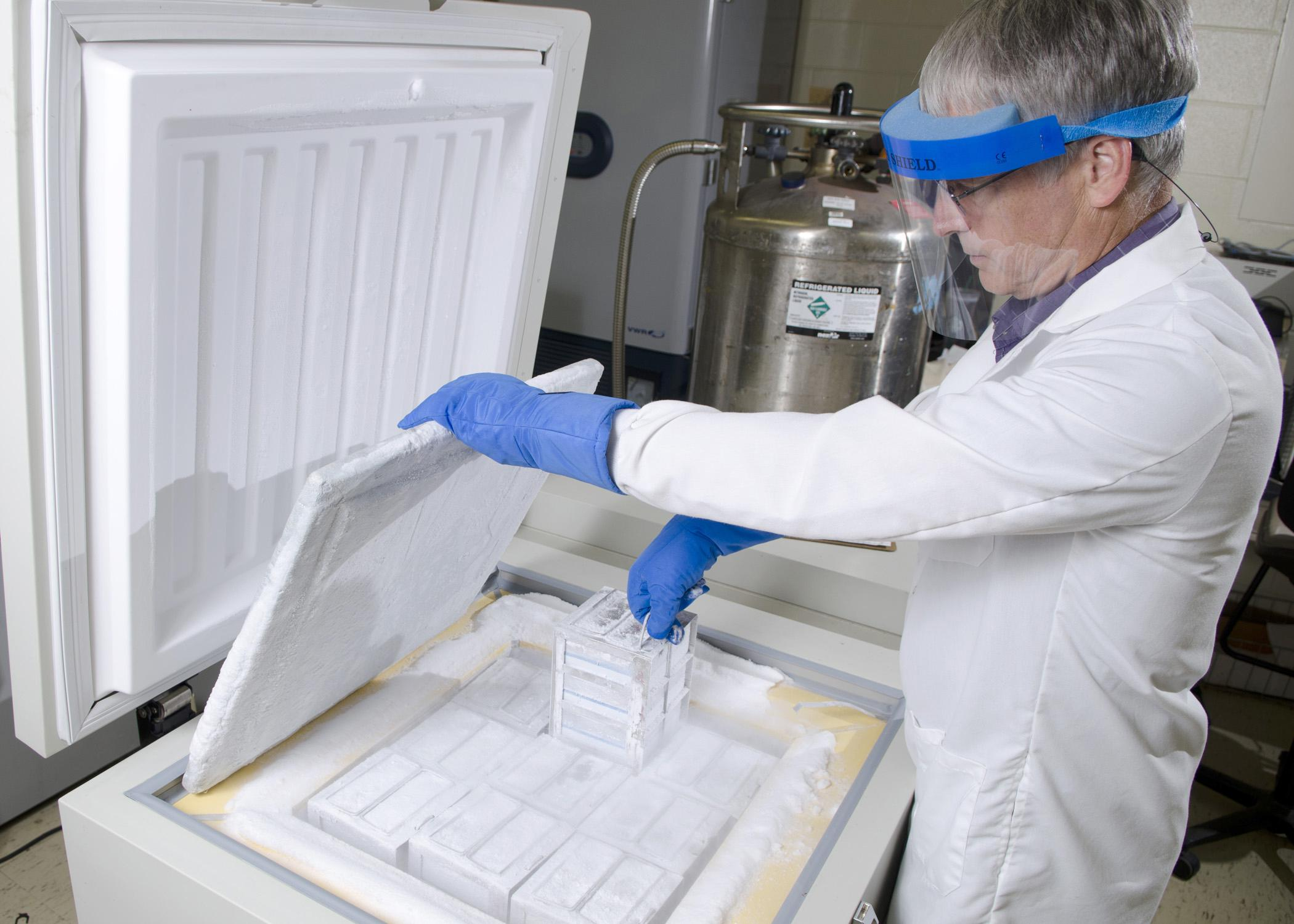 A power outage caused by a natural disaster can destroy years of research and data collection. Larry Hanson uses the Mississippi State University College of Veterinary Medicine's cryogenic freezer to store fish cell cultures at -150 degree Celsius. The freezer is linked to a backup liquid nitrogen tank to keep it cold even when the electricity fails. (Photo by MSU College of Veterinary Medicine/Tom Thompson)