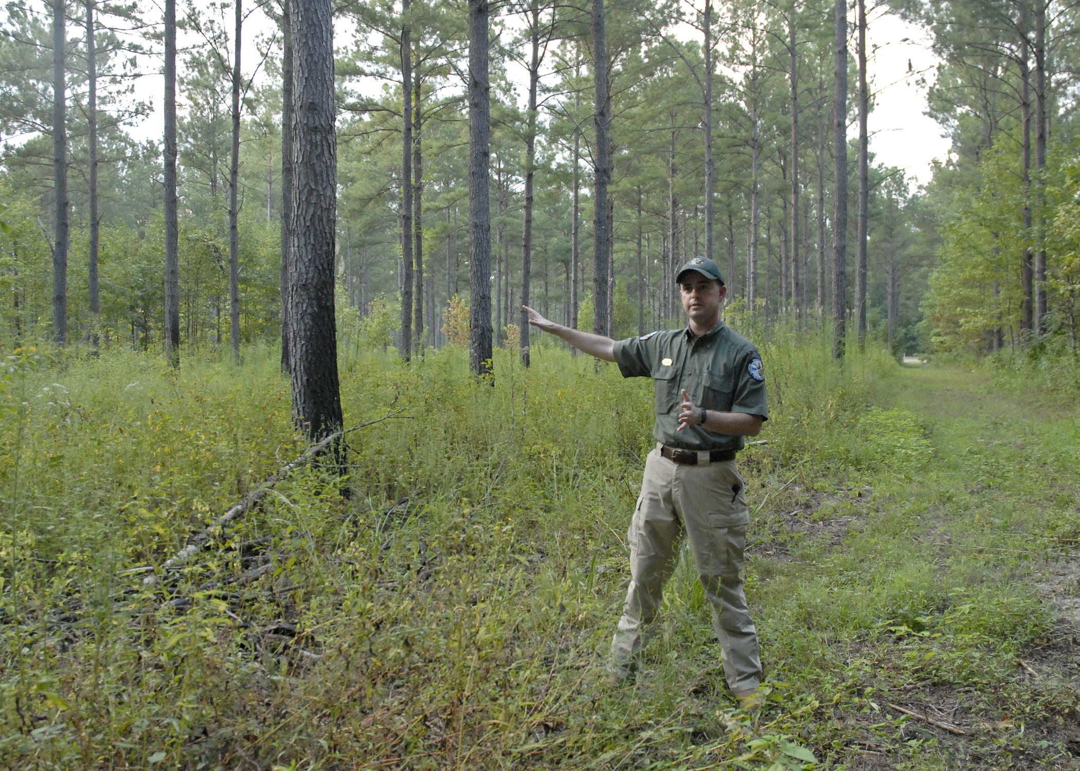 Scott Edwards, a private lands wildlife biologist with the Mississippi Department of Wildlife, Fisheries and Parks, talks about how herbicides and controlled burns can benefit a pine stand on a demonstration farm near Aberdeen, Miss., on Thursday, Sept. 12, 2013. (Photo by MSU Ag Communications/Linda Breazeale)