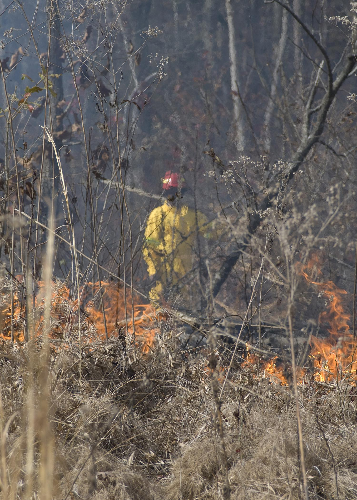Clyde Brown, an agricultural technician with Mississippi State University's Forest and Wildlife Research Center, stands on a fire lane to monitor a prescribed fire on a cut-over in Oktibbeha County. After the site was clear cut and an aerial application of herbicide was applied, it was burned and replanted in pines. (Photo by MSU Forest and Wildlife Research Center)