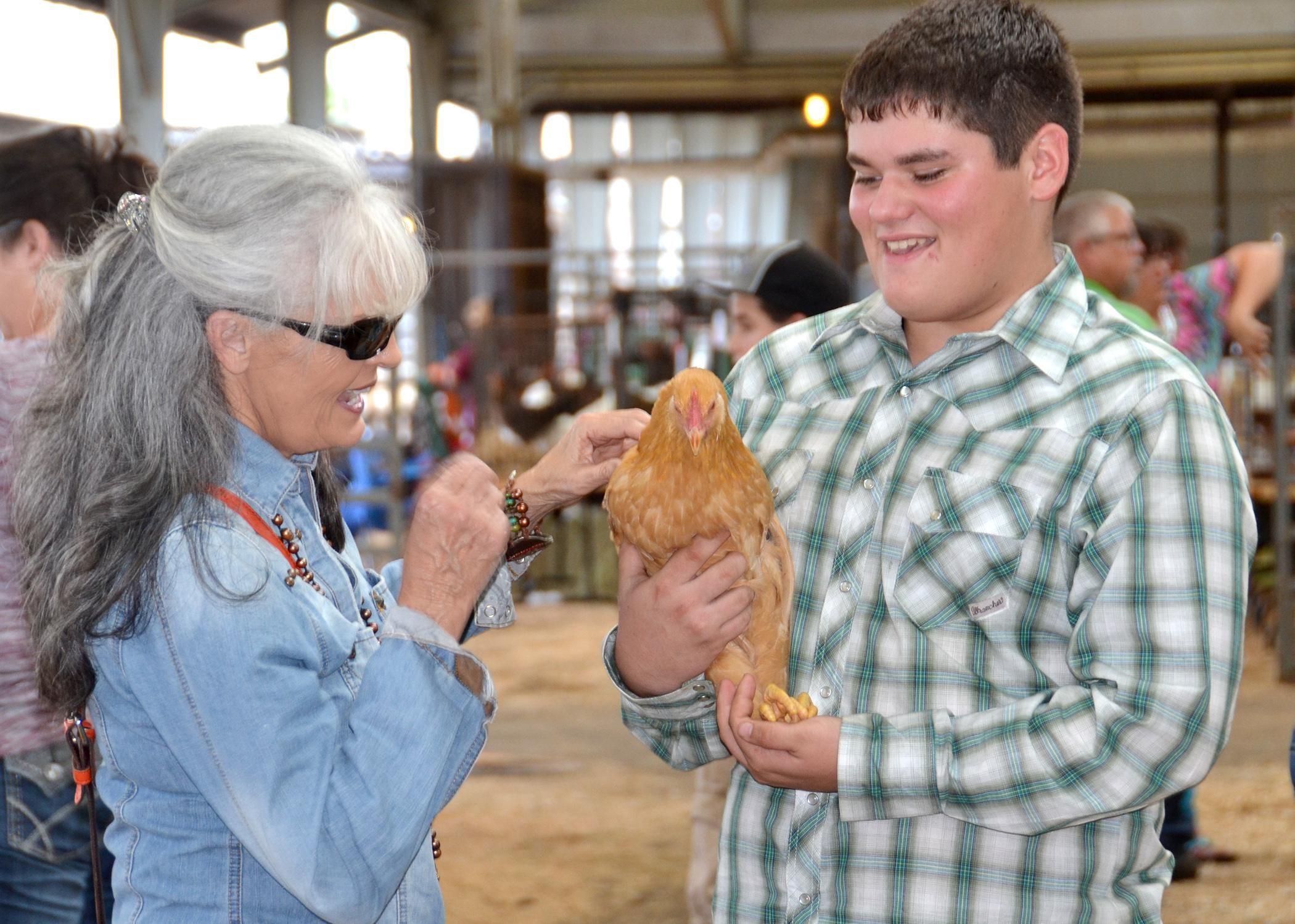 Rachel Harvey of Monticello pets Bob, a buff Plymouth Rock chicken raised by Stone County 4-H member Aaron Scara. Bob was one of six chickens Scara entered into the poultry show at the Mississippi State Fair on Oct. 12. The poultry show returned to the state fair in 2013 after a 30-year absence. (Photo by MSU Ag Communications/Susan Collins-Smith)