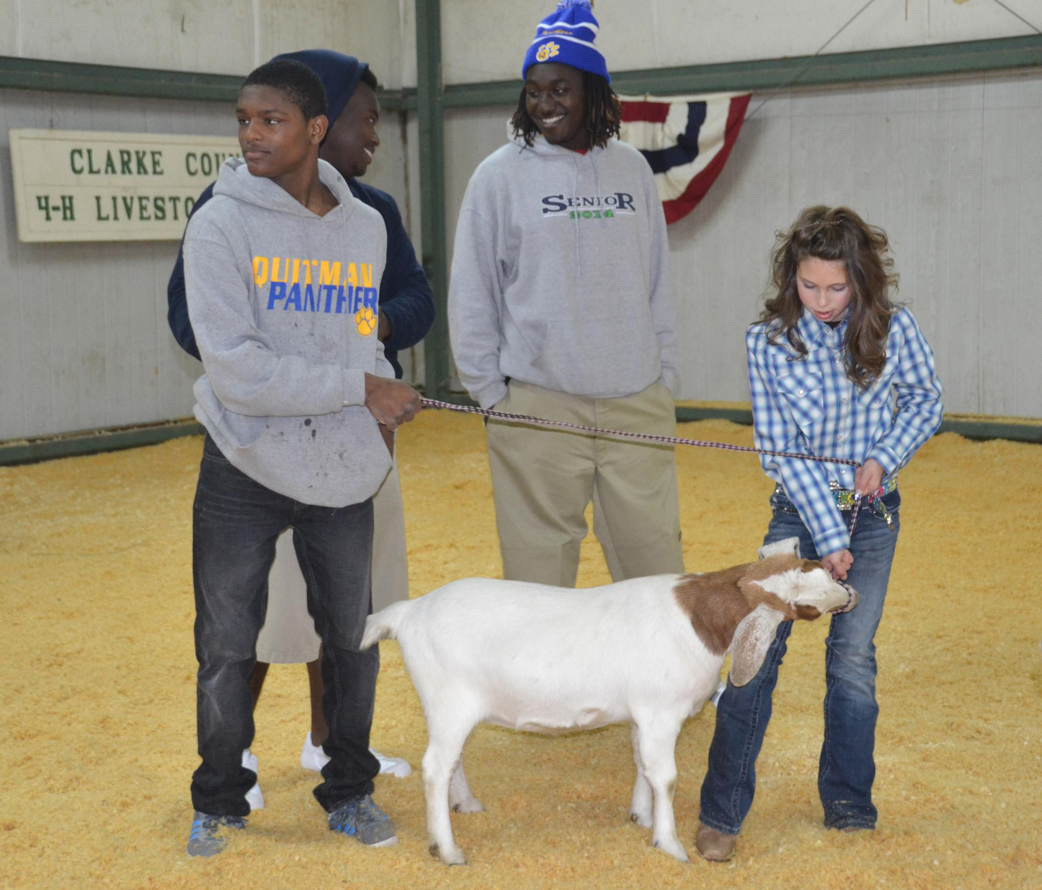 Christian Thornton, left, shows a goat with support from Lafredrick Leggett, Dykarius Arrington and Clarke County 4-H Livestock Club member Jesse Miller during the Clarke County 4-H Special Needs Livestock Show Jan. 17 in Quitman. (Photo by MSU Ag Communications/Susan Collins-Smith)