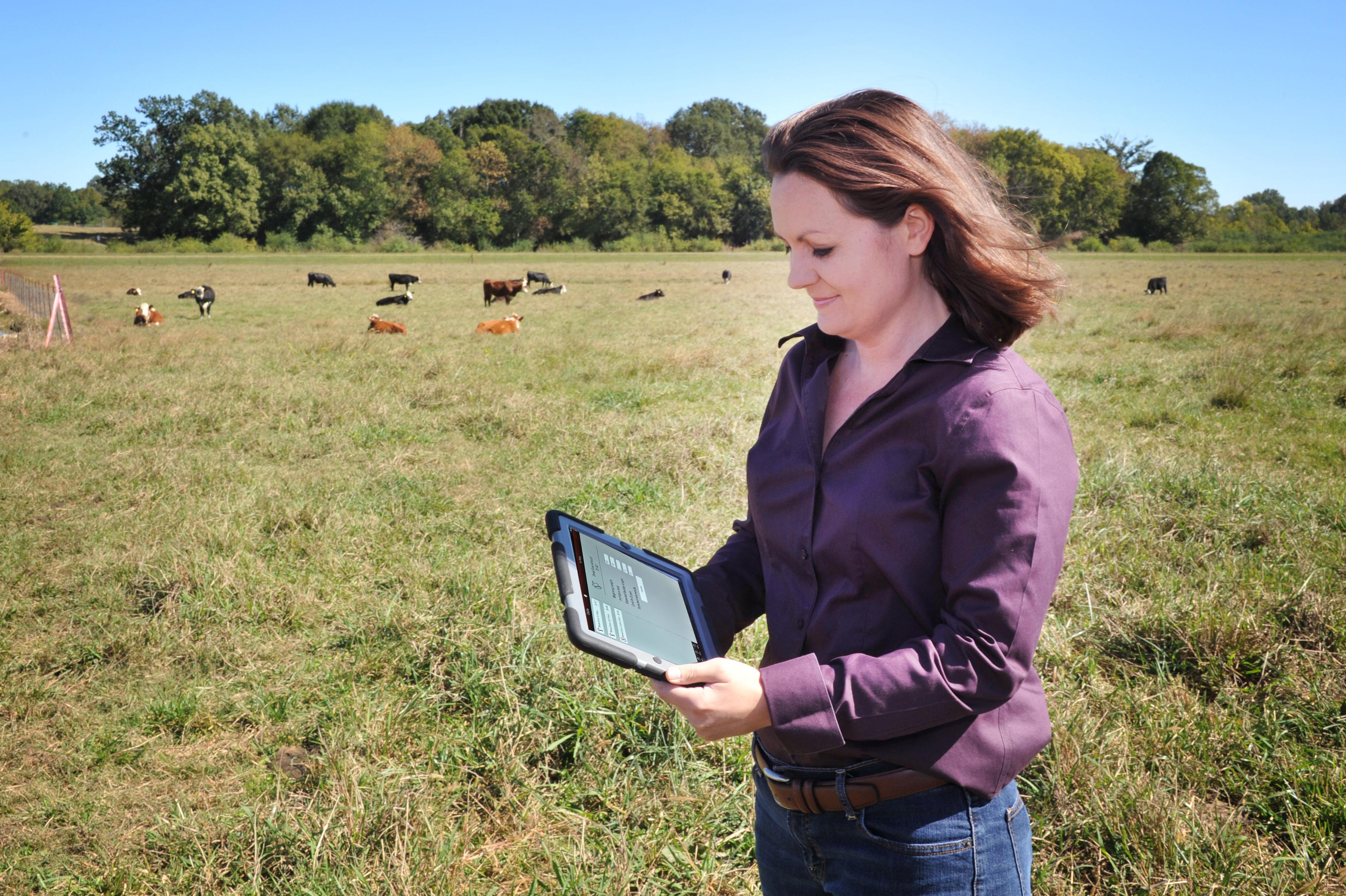 Mississippi State University professor of animal and dairy sciences and Extension beef cattle specialist Jane Parish uses an application on an iPad to review cattle break-even prices while in the field at the Henry H. Leveck Research Farm on the south side of the MSU campus in December 2013. (File Photo by MSU Ag Communications/Scott Corey)