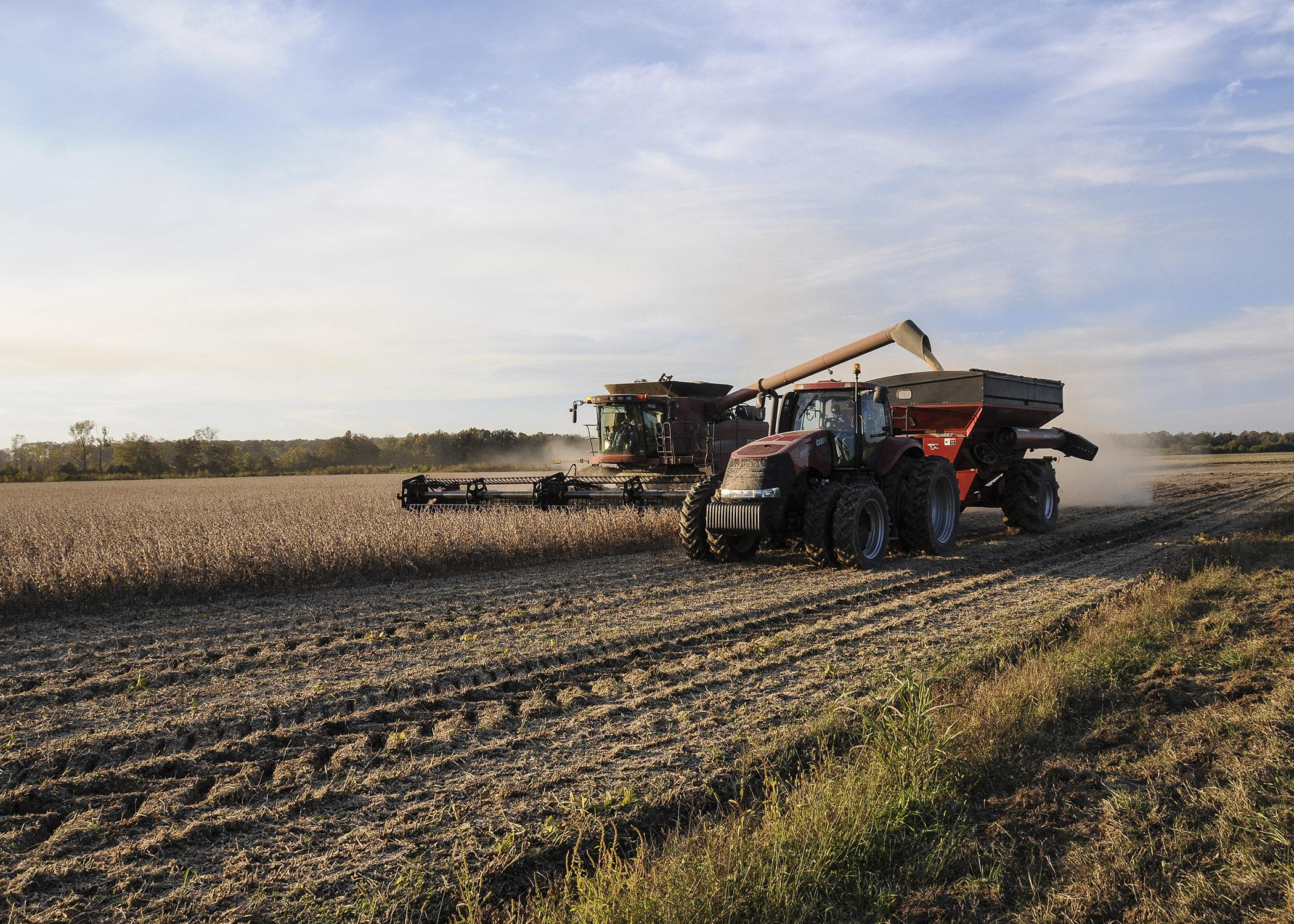 Careful farming practices, such as reduced tillage and restricted traffic patterns, can reduce soil compaction in fields. Compacted soil prevents plant roots from reaching as deep into the soil as needed for peak performance. (Photo by MSU Ag Communications/Scott Corey)