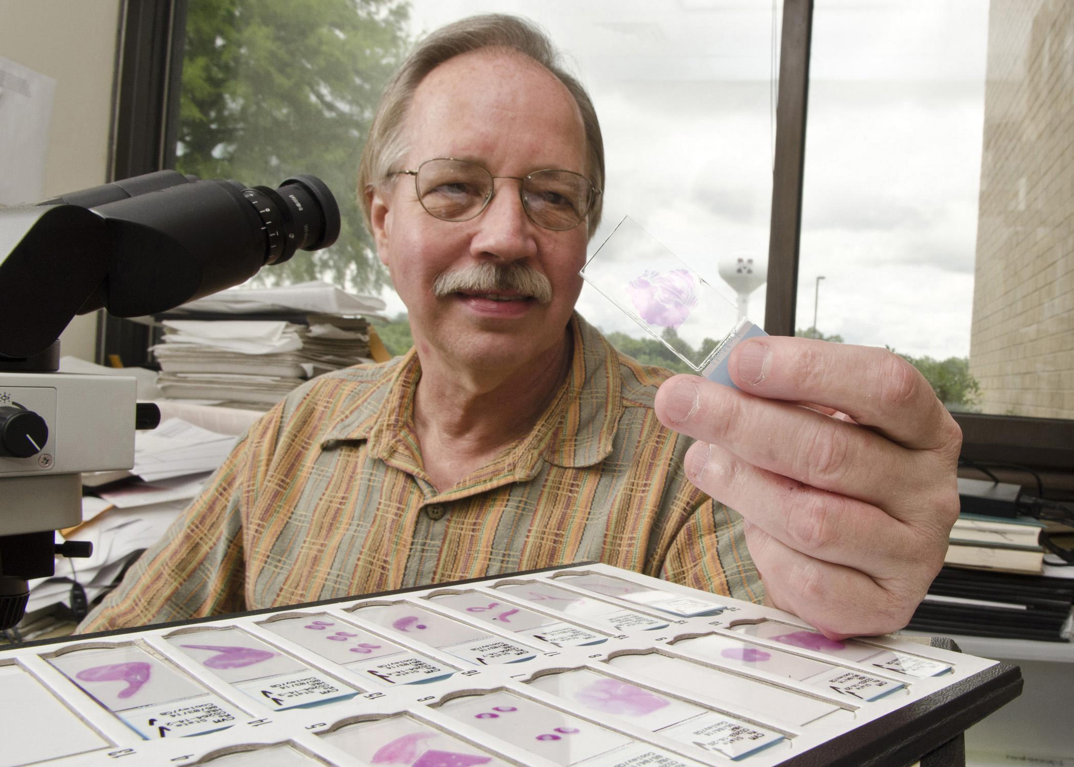 Veterinary researcher Dr. Jim Cooley examines pathology slides in his office at the Mississippi State University College of Veterinary Medicine. Cooley recently worked with a colleague at the University of California-Davis to confirm a new bovine virus in Mississippi that previously had been identified only in California. (Photo by MSU College of Veterinary Medicine/Tom Thompson)