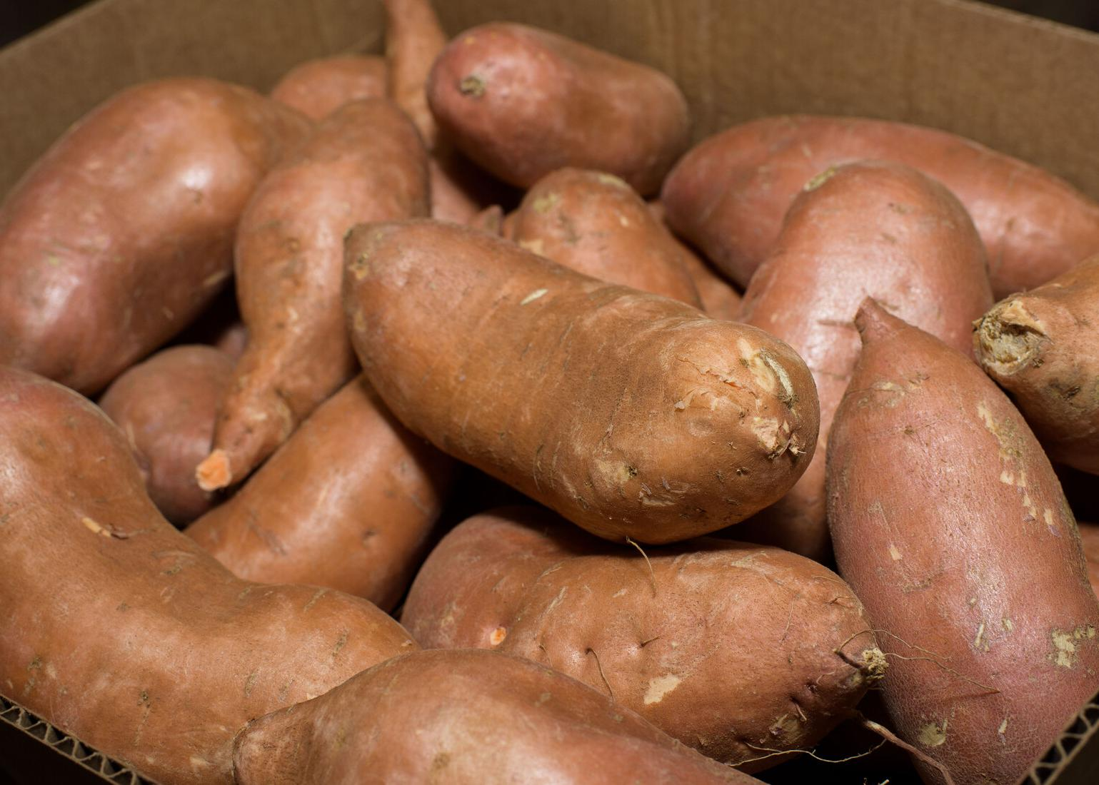 Multiple sweet potatoes in a box.