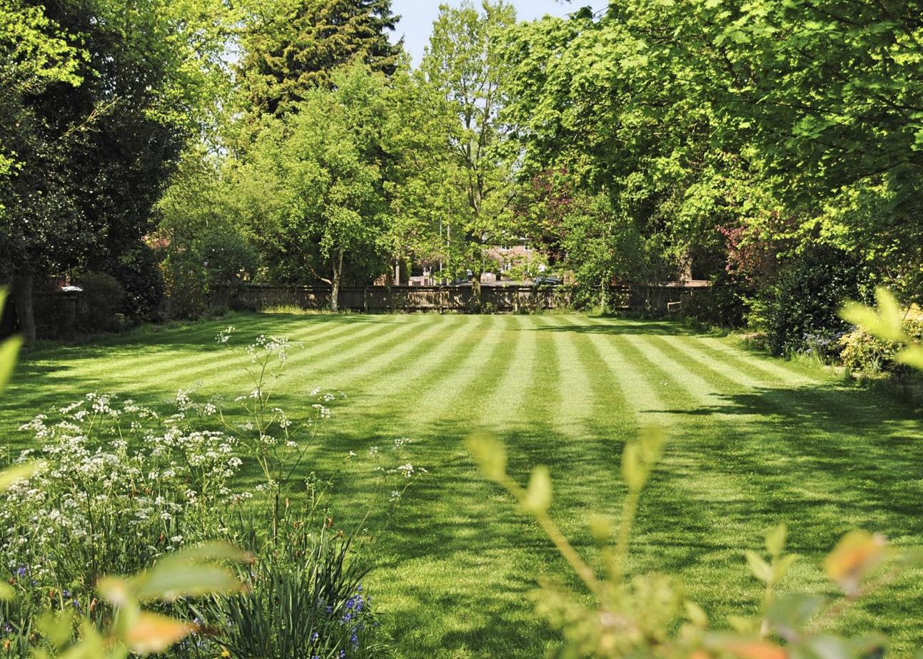 Freshly mowed lawn.