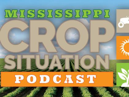 A logo that represents the Mississippi Crop Situation Podcast. The logo contains graphics that represent a tractor, the sun and a plant.