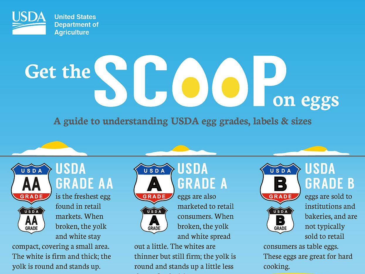 USDA graphic explains egg grades and sizes and what the carton labels mean