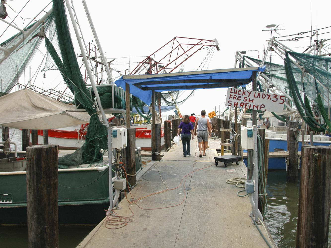Shrimp boats line the public docks in Biloxi after spending the night harvesting in the Gulf. Shrimp lovers are finding good supplies, but prices are up this season. (Photo by Bob Ratliff)
