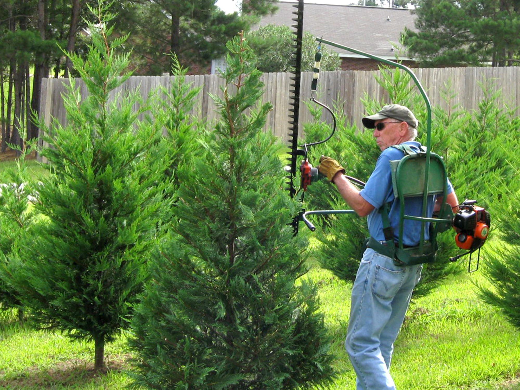 Marvelous Christmas Tree Producers Part - 8: Christmas Tree Farmer Bob Shearer, Of Purvis, Uses A Shearing Machine To  Trim Trees