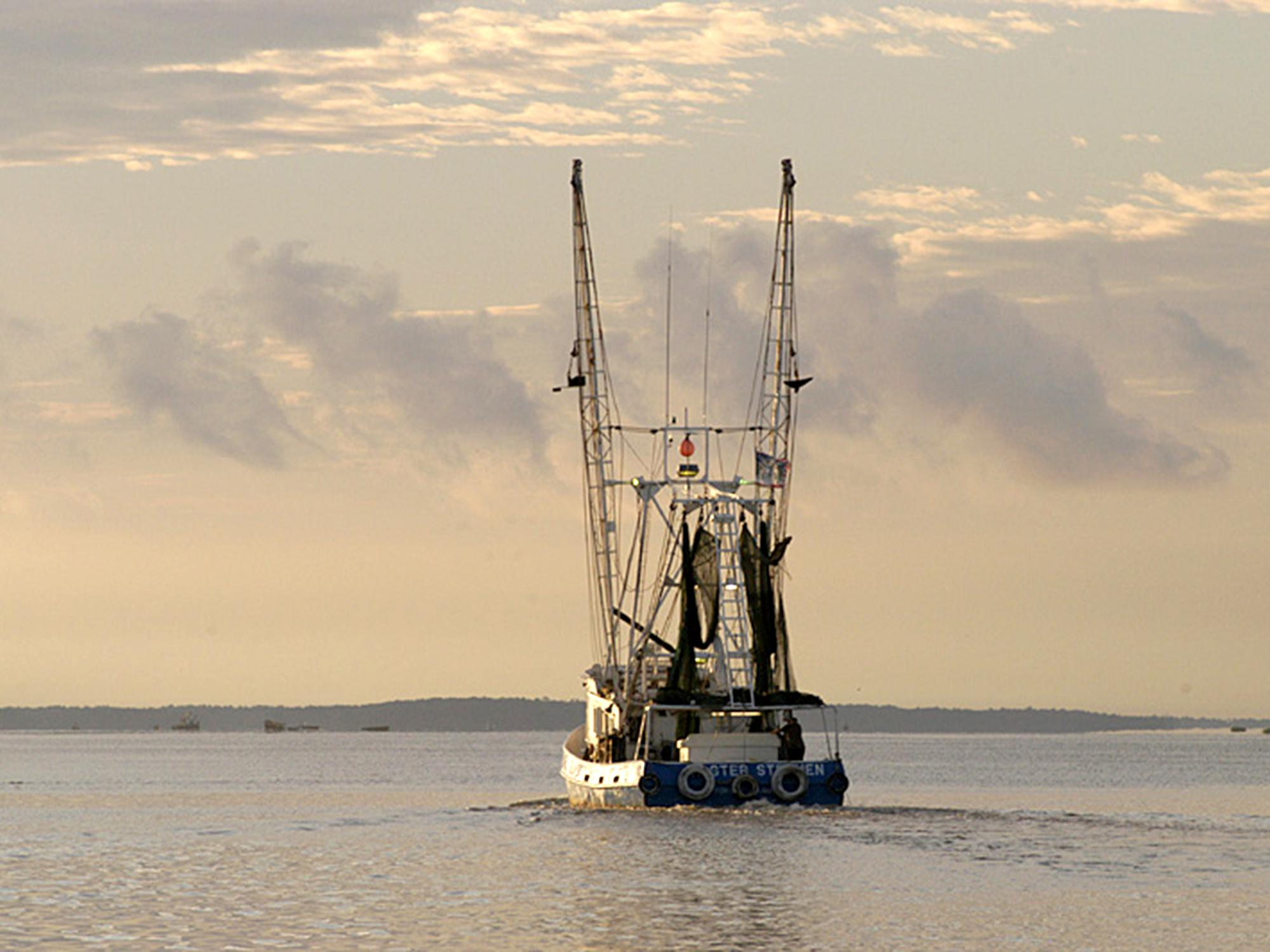 The Master Stephen sets off into the Mississippi Sound off of Biloxi to catch shrimp. (File photo by MSU Extension Service/Dave Burrage)