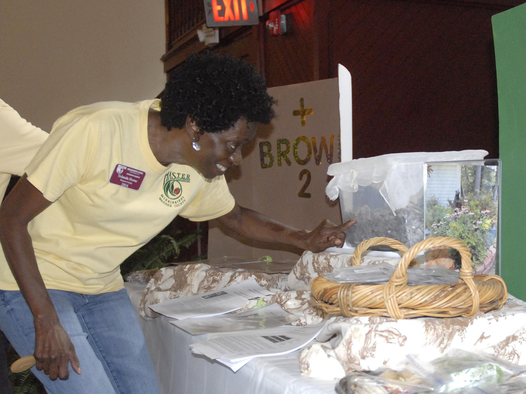 Warren County Master Gardener Yolanda Horne checks on worms living in a plastic bin on June 13, 2017. The worms were part of an exhibit on composting at the Know Your Roots: Grow Your Business workshop in Vicksburg, Mississippi. (Photo by MSU Extension Service/Bonnie Coblentz)