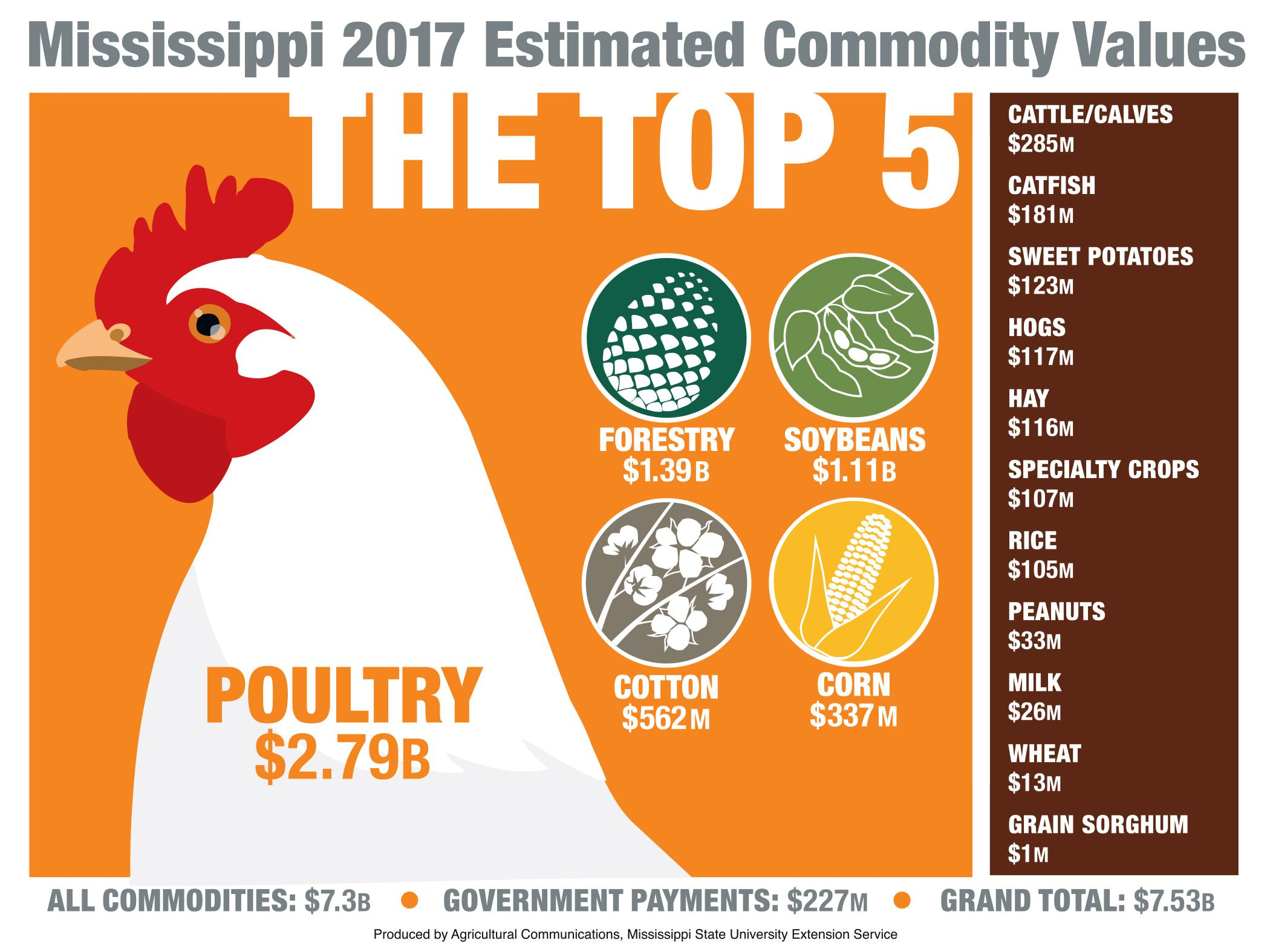 An artist representation of the top 5 agricultural commodities in Mississippi with a drawing of a large white chicken dominating the image.
