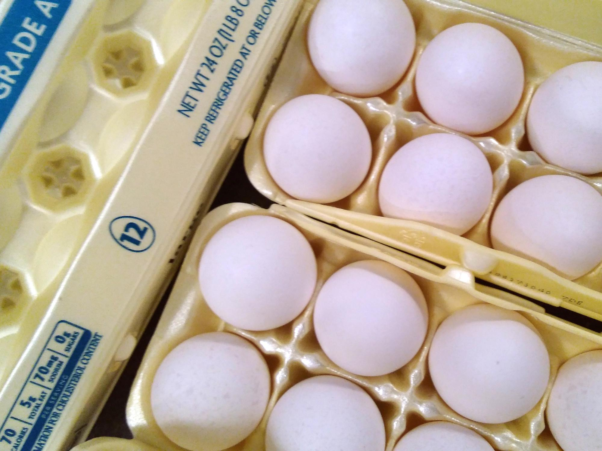 Hen flock inventories grew after the poultry industry recovered from the 2015 avian influenza outbreak, increasing the number of eggs on the market and driving down the price. (Photo by MSU Extension Service/Kevin Hudson)