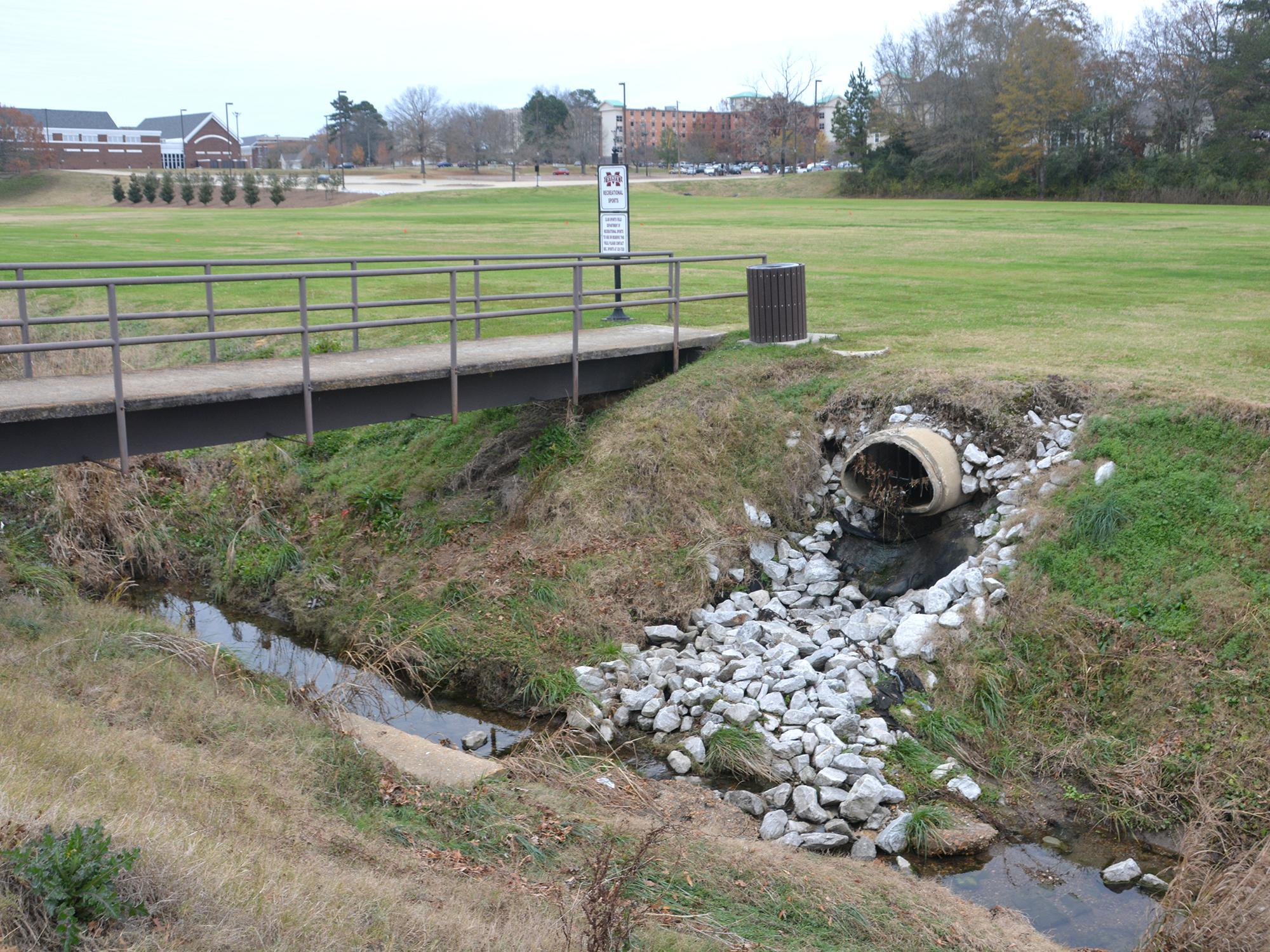 A drainage pipe, with stones leading to the creek bed, emptying into Catalpa Creek.