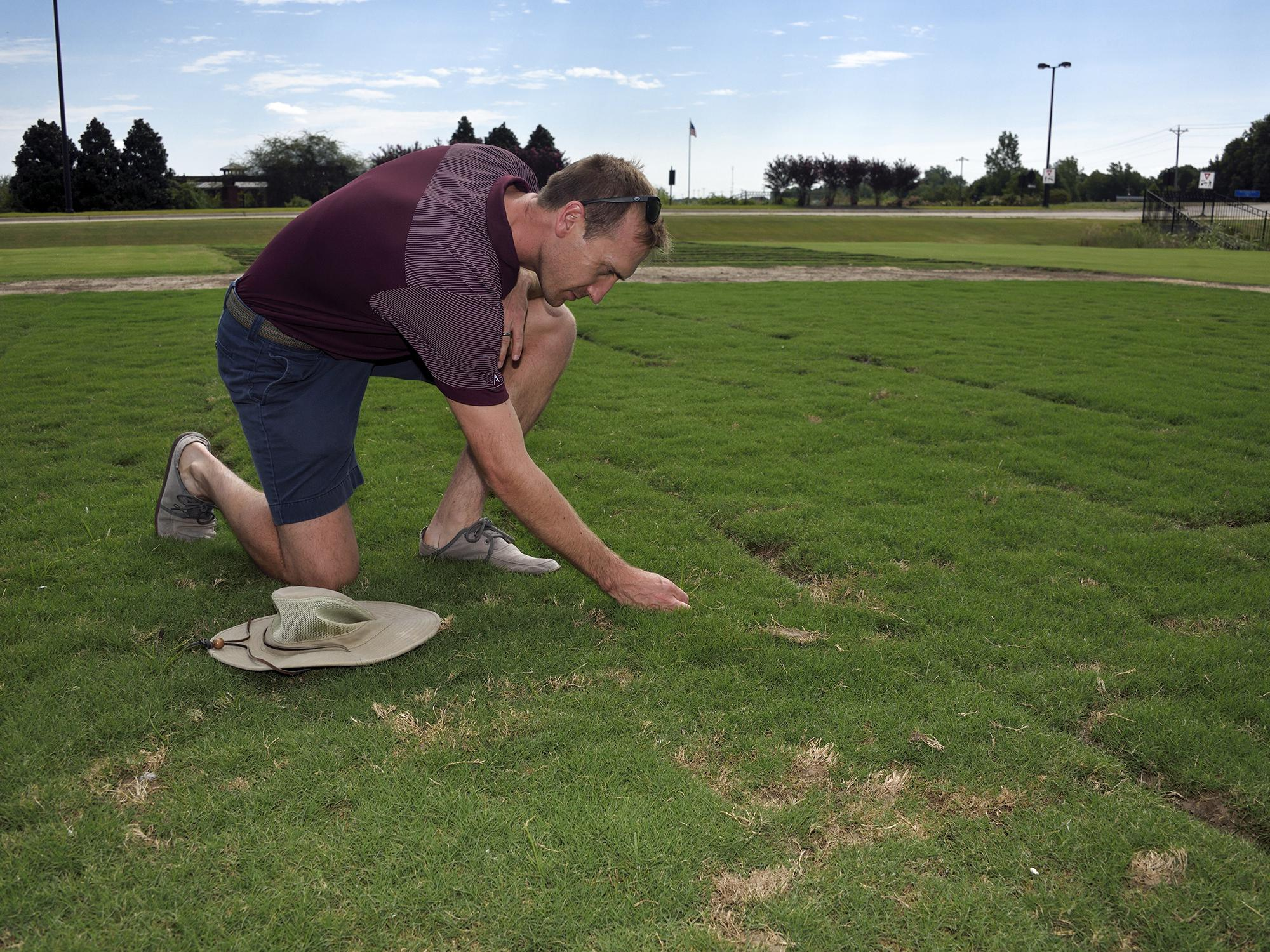A hat rests on the ground next to a man kneeling down to examine grass.
