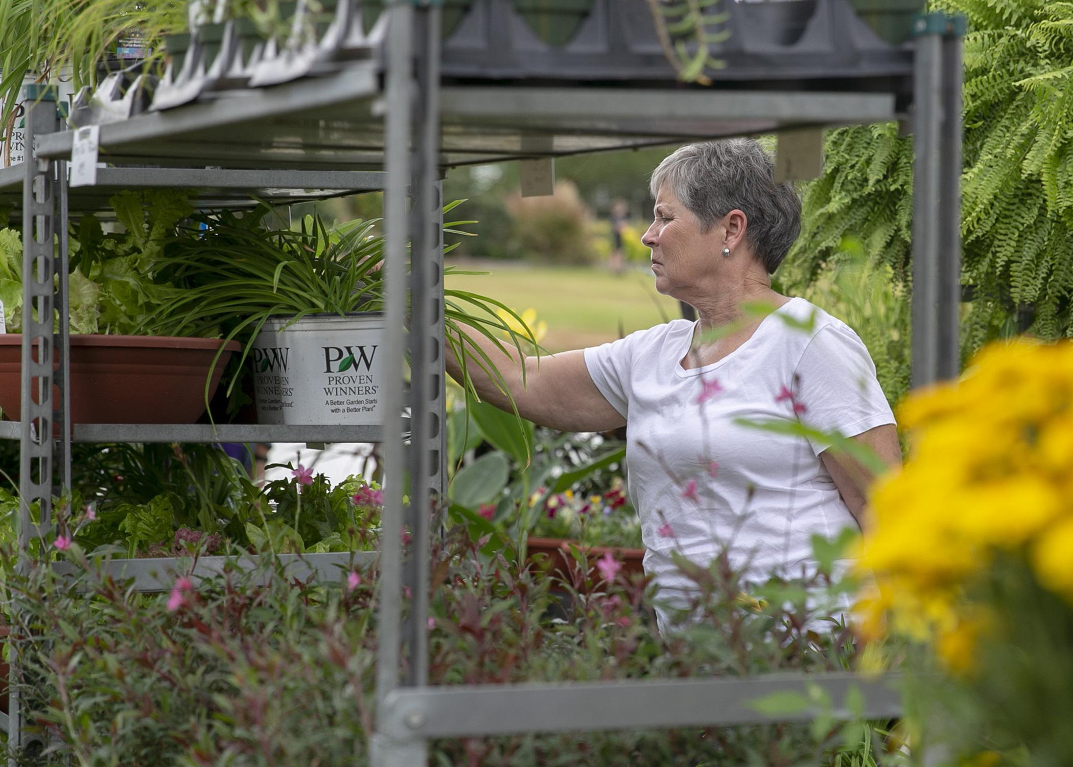 A woman reaches for a plant on an outdoor shelving unit.