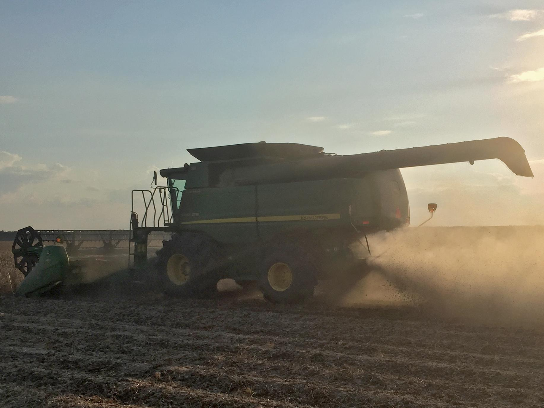 Harvest was nearly done by the end of October for the state's 2 million acre soybean crop. Experts expect yields to average 48 bushels per acre across the state, keeping this year's production in line with that of recent years. This combine was harvesting Leflore County soybeans Sept. 23, 2016. (Photo by MSU Extension Service/Trent Irby)​
