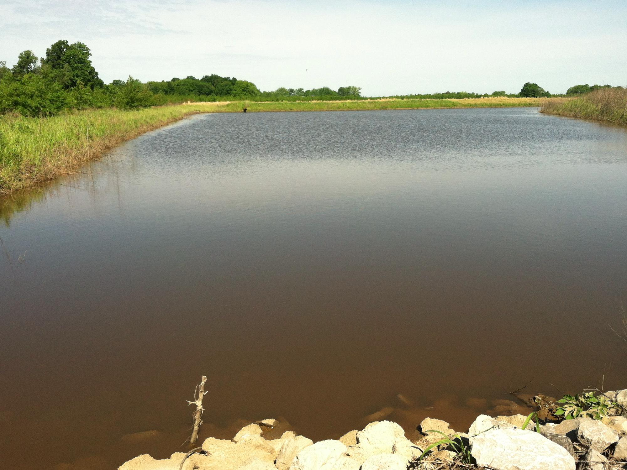 This is a tailwater recovery system on a row-crop farm in the Mississippi Delta. (MSU Extension Service file photo)