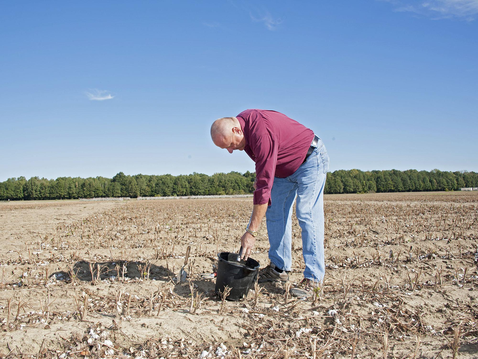 Larry Oldham, Mississippi State University soil specialist, samples soil in a Delta field on Oct. 17, 2014. (Photo by MSU Ag Communications/Kat Lawrence)