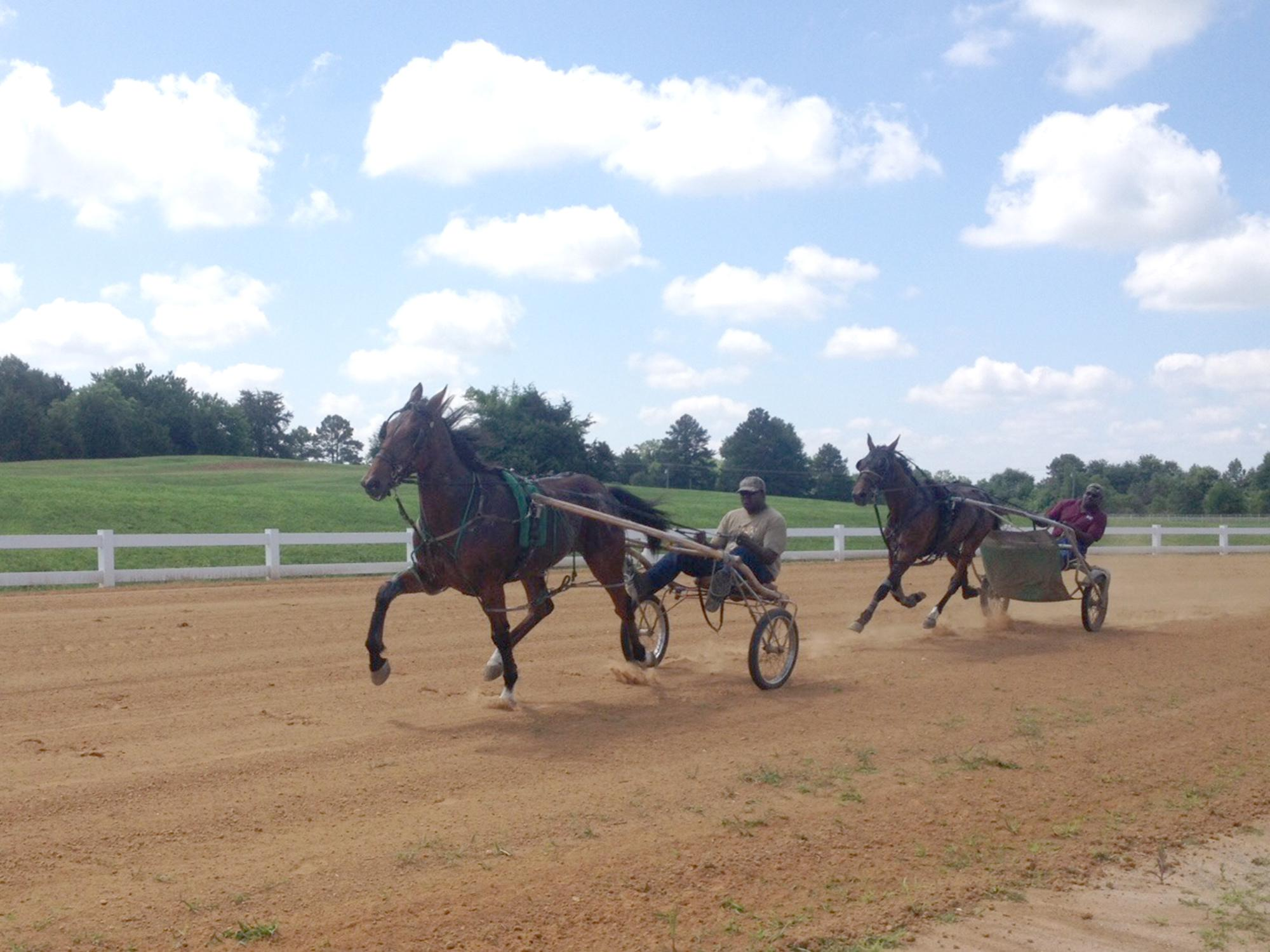 Harness racers take a practice run around the newly renovated track at the Mississippi Horse Park near Starkville. On May 22, sanctioned races will return to the complex, which is a division of the Mississippi State University Extension Service. (Submitted photo)