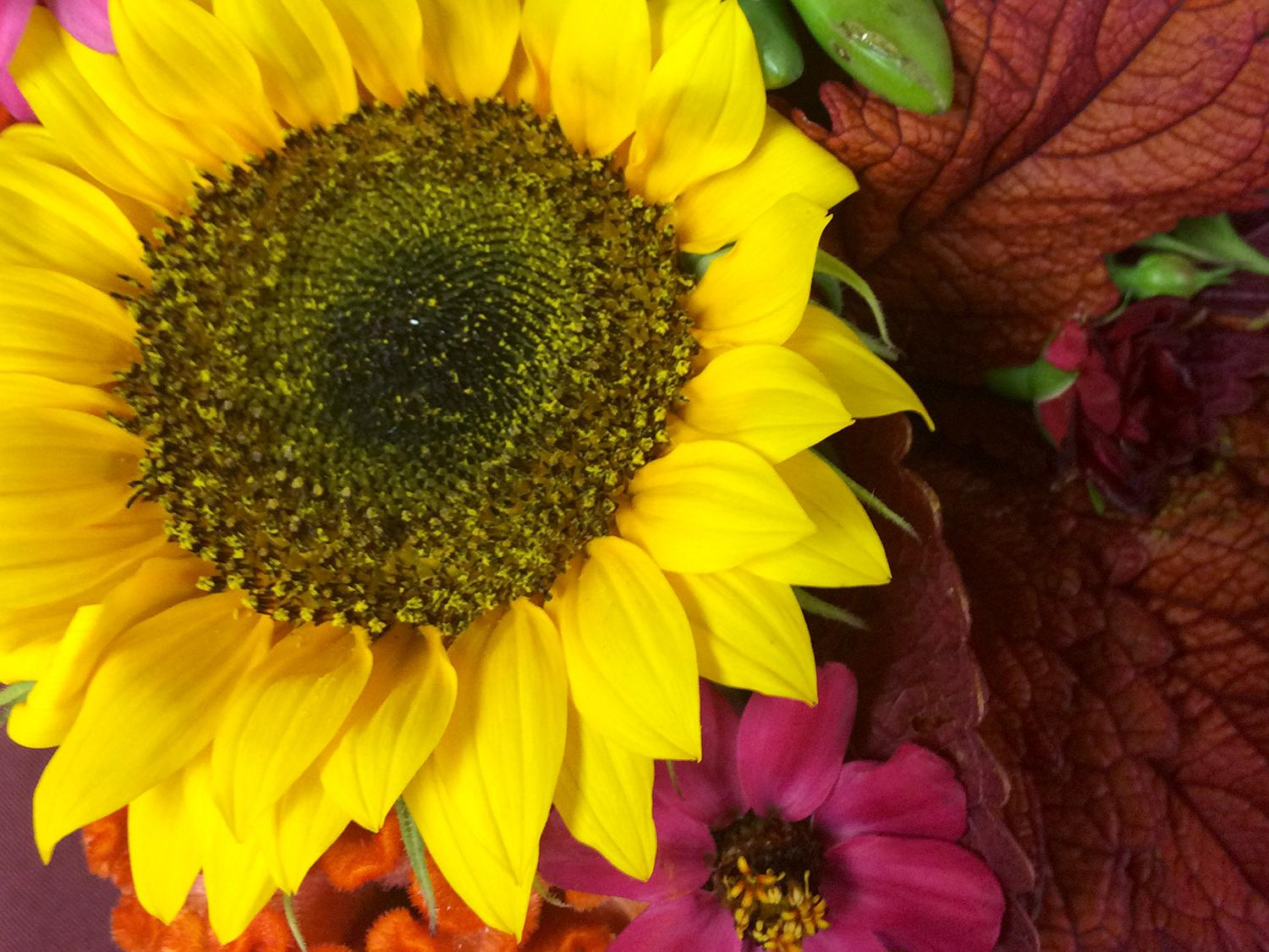 Summer Floral Classes Set For Enthusiasts Pros Mississippi State