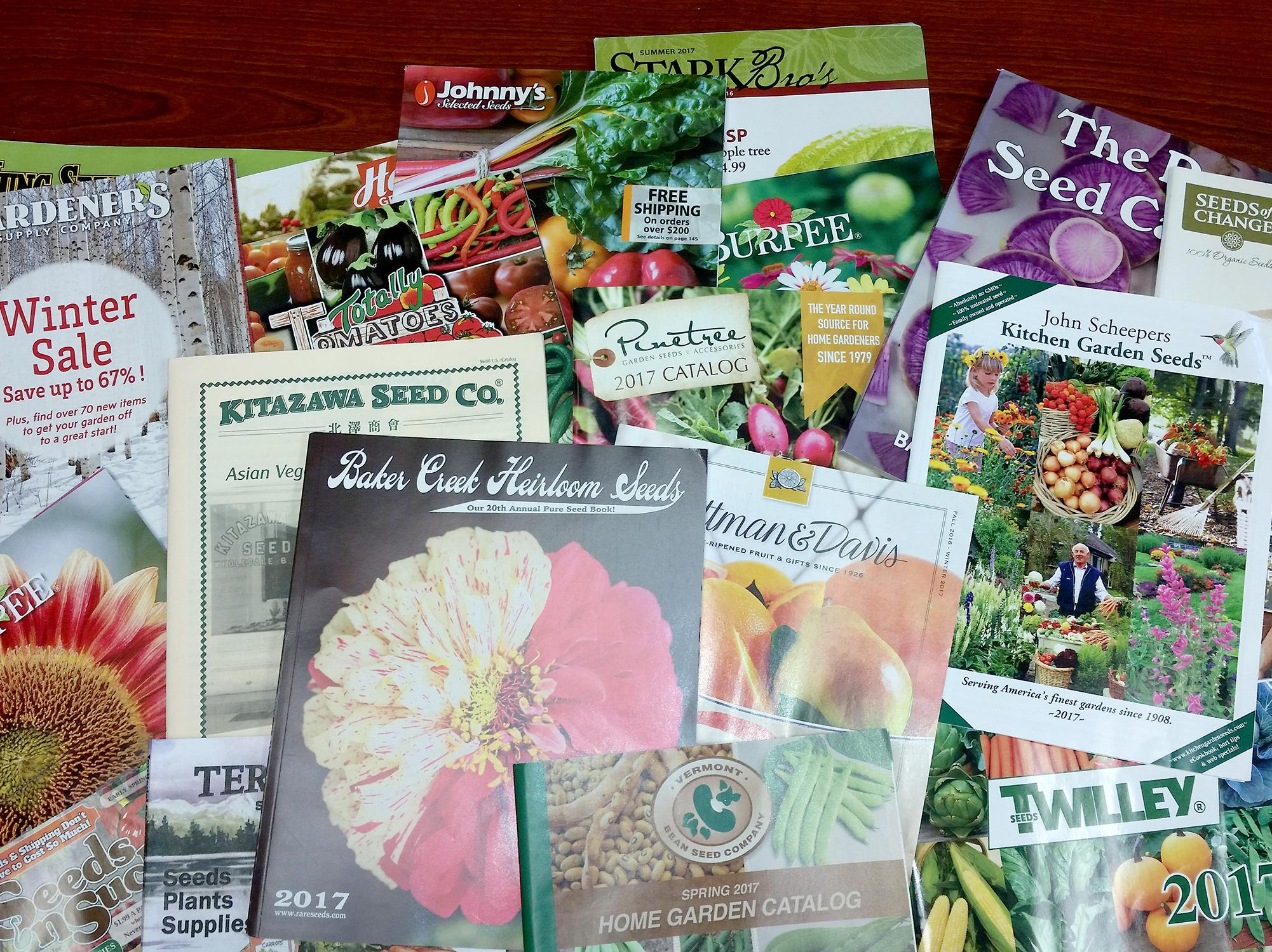 Nothing beats looking at displays of beautiful plants in the garden center, but an advantage of ordering from catalogs is getting exactly the variety you want and maybe even trying news ones. (Photo by MSU Extension/Gary Bachman)