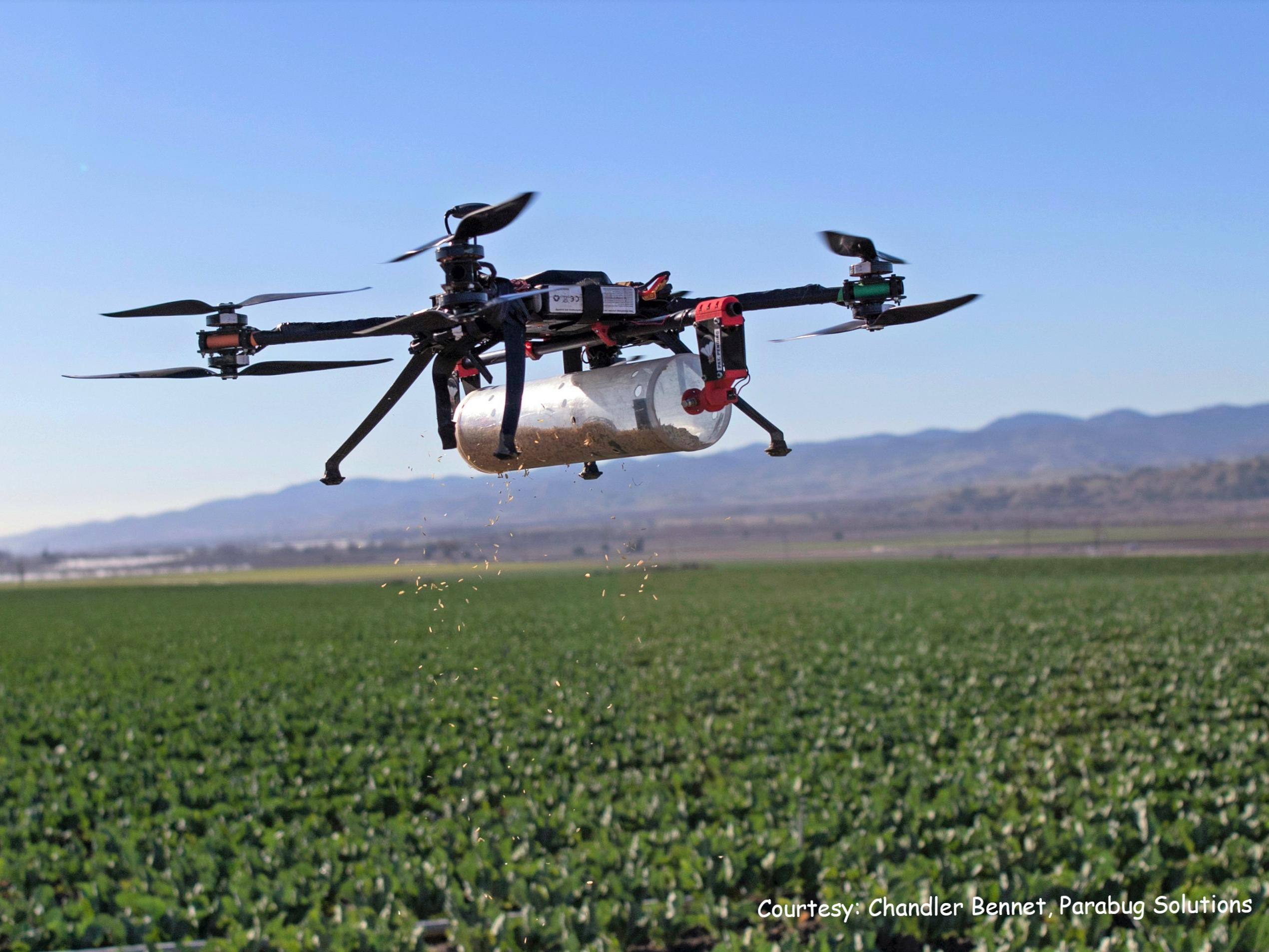 pesticide drone flying over crop.