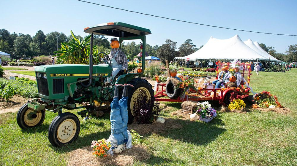 tractor, scarecrows, and fall floral decorations in field at Fall Flower & Garden Fest.