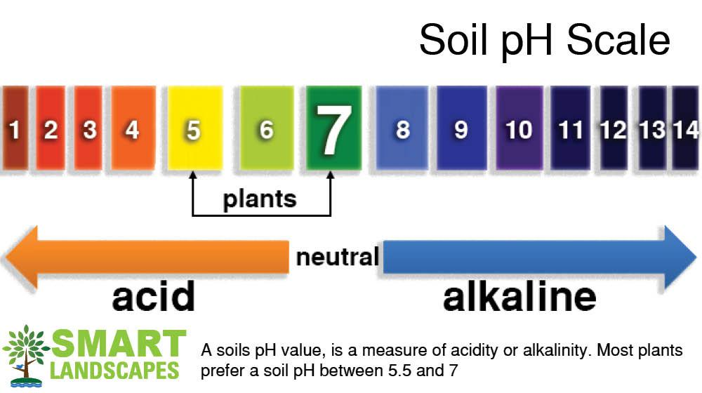 Chart showing soil pH scale