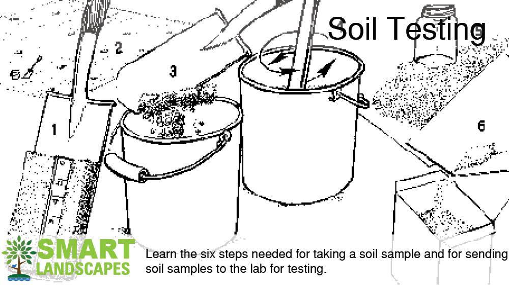 Soil testing sketch