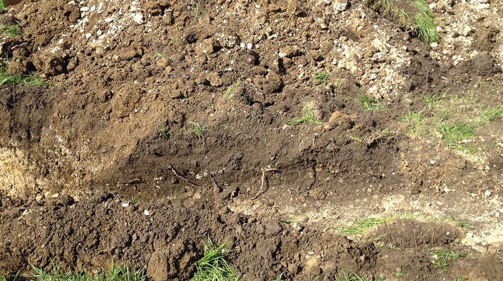 Soil pit on the H. H. Leveck Animal Research Center at MSU.