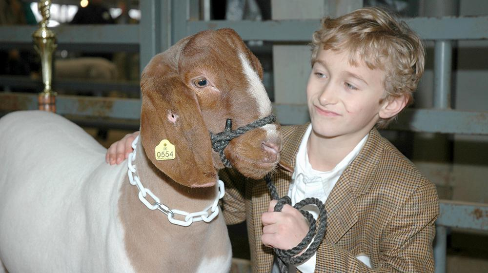 Young boy and his prize-winning goat.