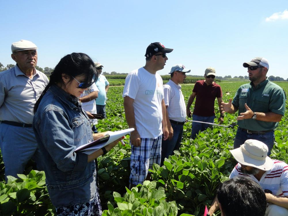 Mississippi State University Extension associate Richard Atwill of the Delta Research and Extension Center in Stoneville, right, explains the peanut crop management process to participants in the Cochran Fellowship Program on June 21, 2017. (Photo submitted by Prem Parajuli)