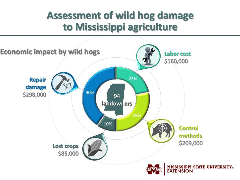 Graphic illustration showing economic impact of wild hog damage to Mississippi agriculture: $298,000 to repair damage, $209,000 for control measures, $160,000 labor costs and $85,000 in lost crops.