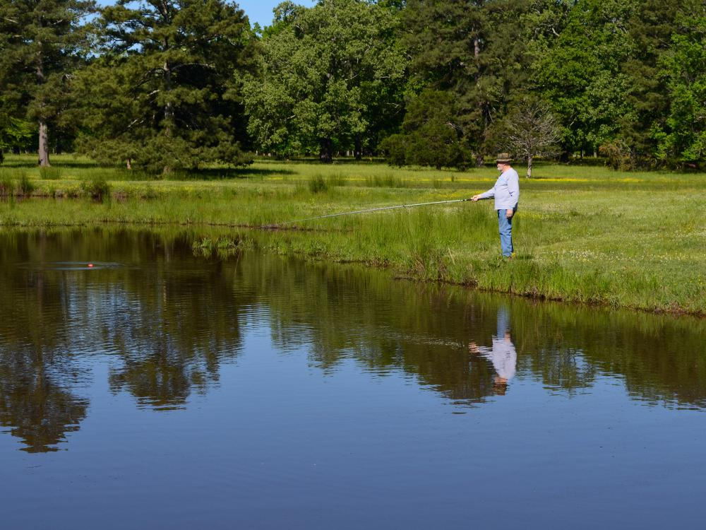 Older man holds a fishing pole on the shoreline while watching a red cork on a quiet pond.