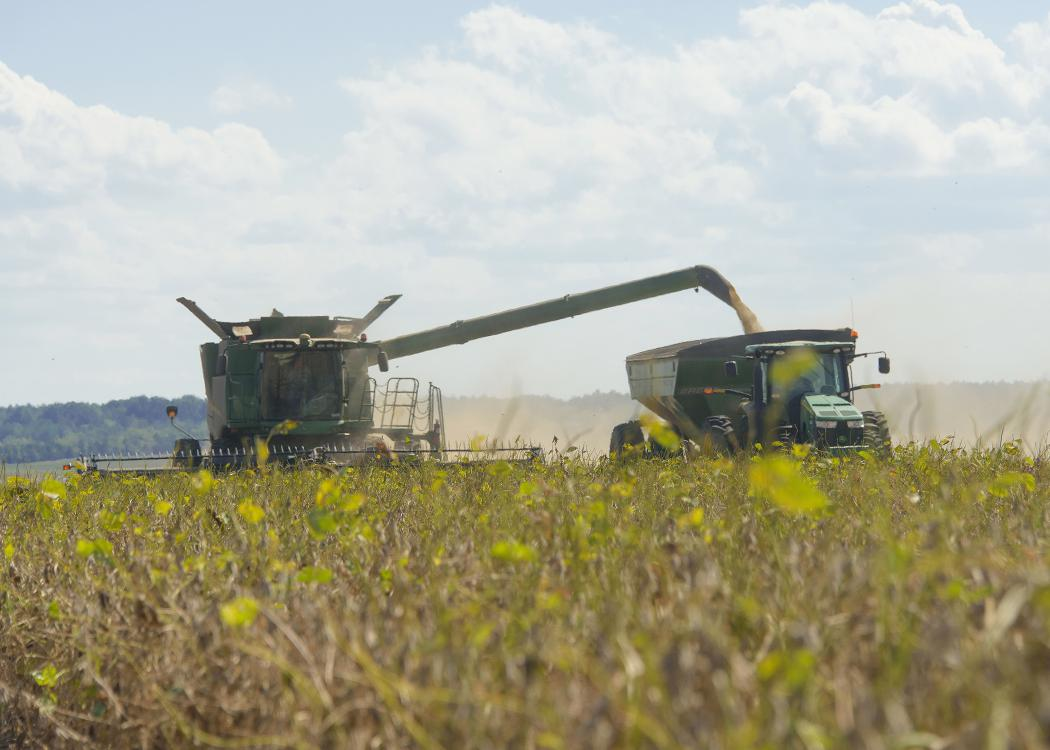 A combine moves through a field, pouring harvested grain into a tractor driving alongside.