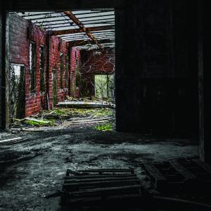 dimly lit interior of an abandoned, overgrown building