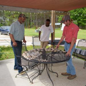 Three men standing around a table with shells and fossils on it.