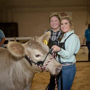 Two teenage girls stand beside a cow at the Mississippi State Fair.