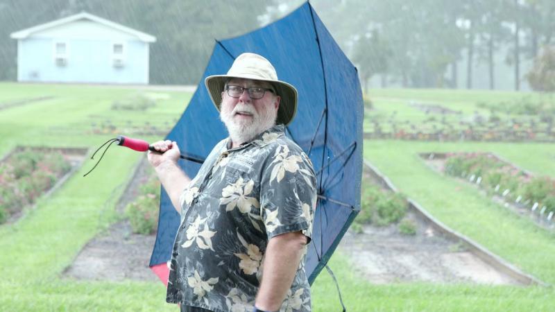 Gardening Rain Delay